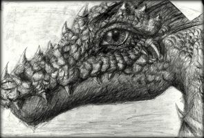 The Dragon's smile by jimmyst1