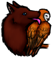 Wolf- Owl love by momodory09
