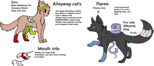 Alleyway Cat's [2015 SPECIES REF] by LlCKETY-SPLlT