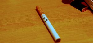LionCig by angelwillz