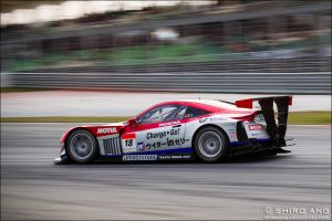 Super GT 2012 - 02 by shiroang