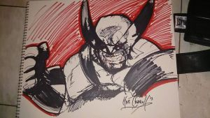 10 Min Wolverine Sharpie Sketch by papabear7