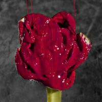 Painting the roses: Painting by BanishedInChains
