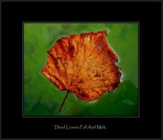 .:Dead leaves fall and melt:. by Shum23