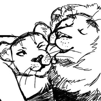 A Couple of Lions by Hobbes918