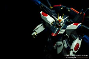 Strike Freedom Gundam FBM 04 by portpolyonamo1979
