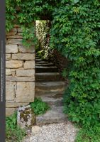 Secret Stairs I by WDH-Stock