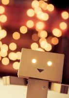 Danbo Hug by Cj-Caty