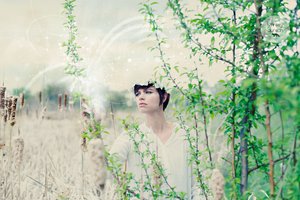 Sneak Preview: The Elven Garden by lynnseyography