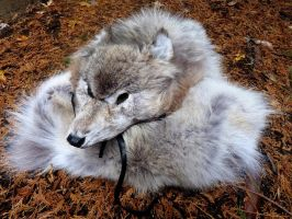 Just the wolf headdress by lupagreenwolf