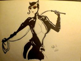 Catwoman by mrjohnsenquiz98