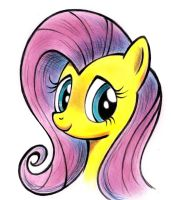 Fluttershy by zdrer456