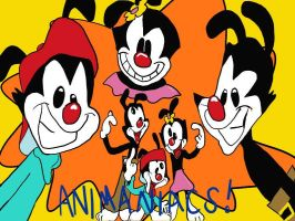 .:Animaniacs:. by 221bee