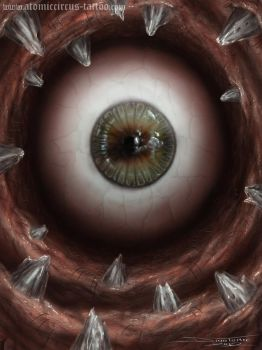 eye 2 by AtomiccircuS