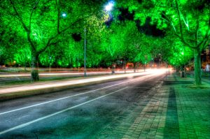 Night: Green Trees HDR by DanielleMiner
