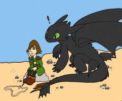 Hiccup and Toothless by wackko200