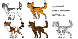 -CotN Adopts- CLOSED by Allizia