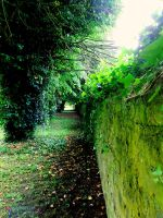 Garden Wall by Micireland