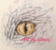 Golden draon eye by ilinea