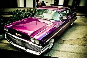 Purple Standout by Mitchography