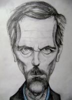 Dr. House by Panzernecker