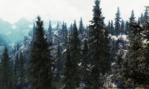 Beauty of Skyrim by Agrass