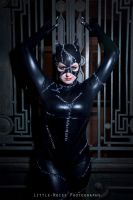 Selina Kyle by Fairie-Tails