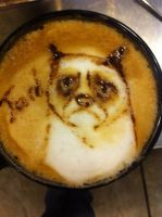 Grumpy Cat Latte by Coffee-Katie