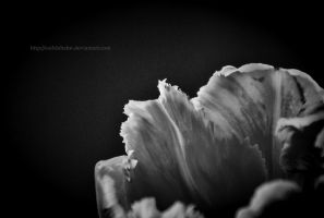 Tainted Desire by eschlehahn
