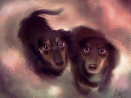 Sweet Pups by becky