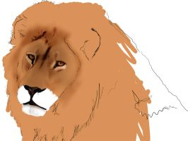Lion King ::: W.I.P by mazhear