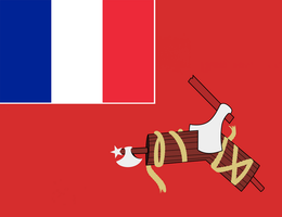 French Rebel Flag by Party9999999