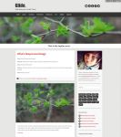 Glide Responsive Tumblr Theme by wilde-media