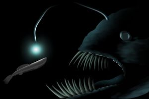 Patience 'Angler fish' by 0-ASH-0