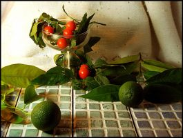 lime and berries 2 by turkill