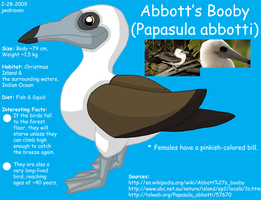 Abbott's Booby Info by JwalsShop