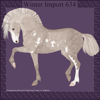 Winter Import 634 by ThatDenver