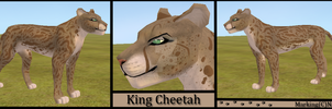 King Cheetah by Nala91