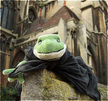 Cathedral of the Frog by laracoa