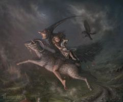 Volo by cornacchia-art