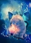 fairy kitty by MariLucia