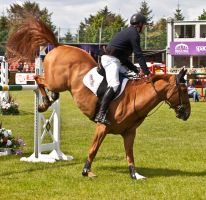 Jumping stock 12 by Kennelwood-Stock