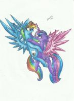 Dashie and Twilight by Careness