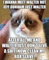 more stupid grumpy cat by smoshlover6