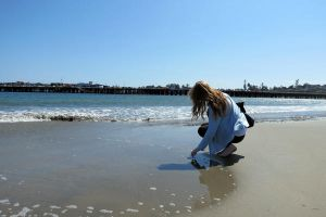 Searching for Shells in Santa Cruz by tracy-Me