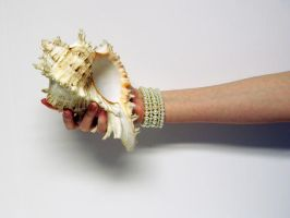 Shell in Hand Stock20 by D-is-for-Duck