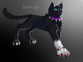 WarriorCats Wallpaper : Scourge by Hoffnungsstern