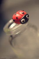 Fly Away Home Little Ladybird by MidnightBlueTopaz