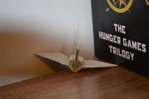 The Hunger Games by ArtisticEssence