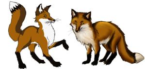 Foxes by DancesWithFoxes